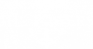 The Towers Final Logo White